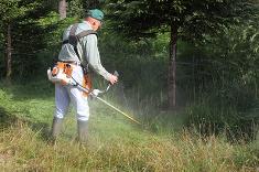 Débroussaillage des terrains : pensez-y avant l'été !