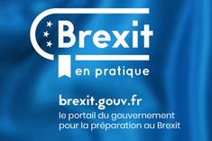 Voyage, séjour, études, travail… : le Brexit en pratique