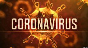 Coronavirus : quels droits en cas d'annulation d'un vol ou d'un séjour ?